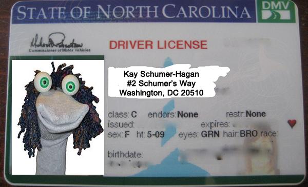 kay hagan ID small