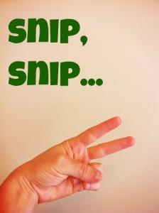 snip-snip